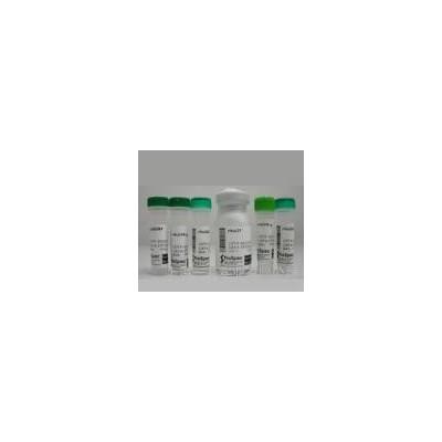 一基苯甲酰芍药苷(标准品)38642-49-8