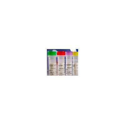 一基Oxypaeoniflorin;氧化芍药苷