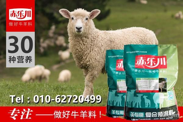 赤乐川饲料级 羔羊快速育肥饲料配方