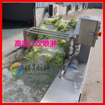 腾昇TS-X300水产加工设备标准型洗菜机 红辣椒清洗机 大白菜臭氧清洗机广东腾昇厂价直销