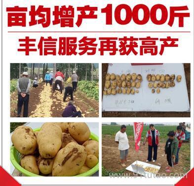 农业服务项目招商 农资商加盟