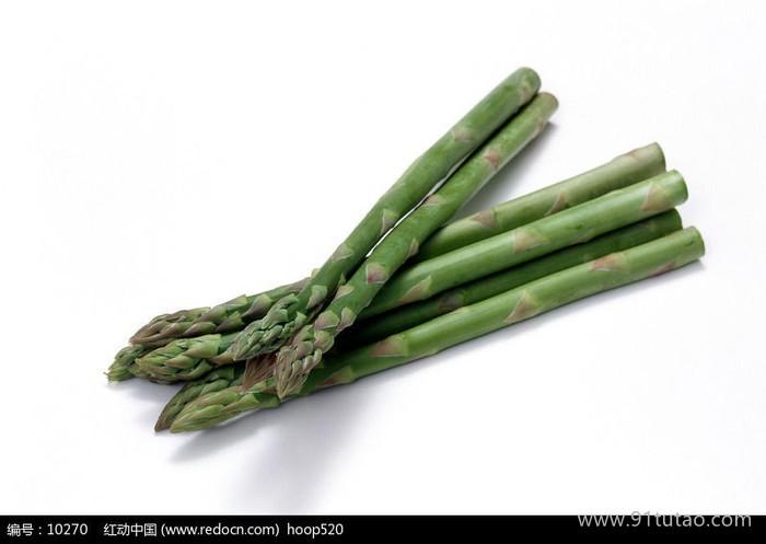 国产芦笋种子  种苗批发  优质芦笋种子