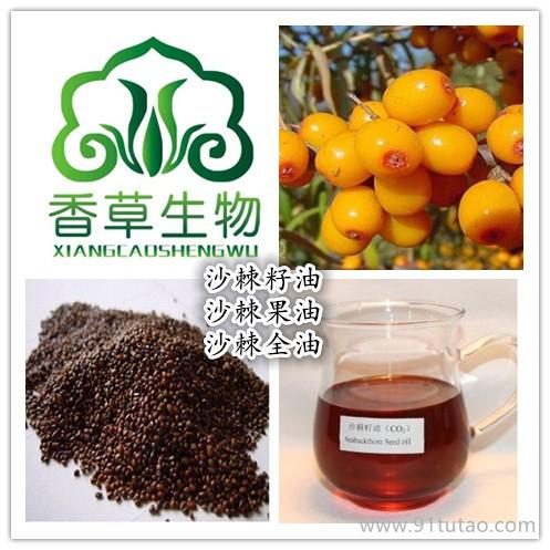 宁夏厂家直销沙棘籽油 沙棘果油  厂家热销沙棘全油99%
