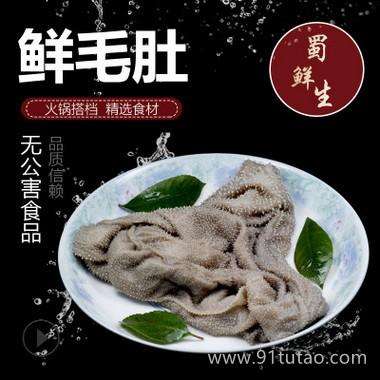 蜀鲜生 毛肚 鲜毛肚   火锅食材批发 长期供应