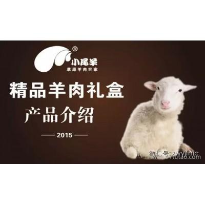 内蒙古小尾羊精致羊肉礼盒4.9kg人祥礼盒