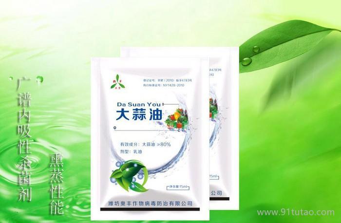 农药公司直销农用杀菌剂-防治炭疽病植物源农药-大蒜油