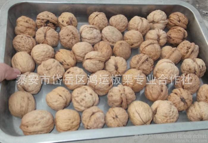 上市新疆特产坚果 原生态核桃仁 新疆干果 核桃 产地特价促销