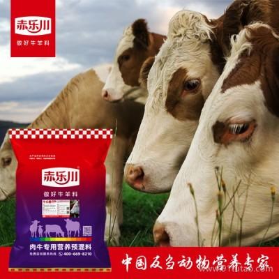 成年牛长肉浓缩料